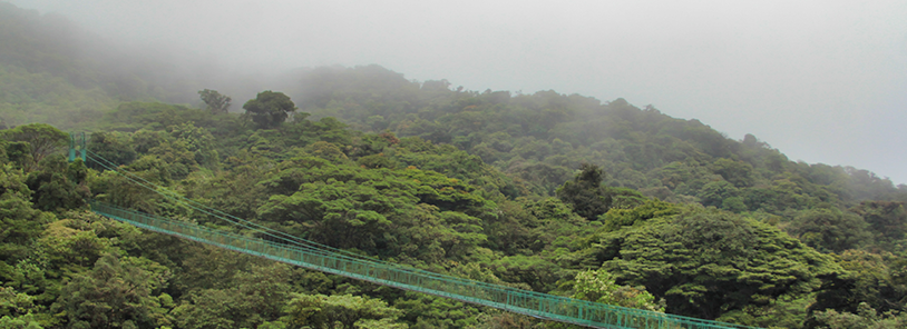Clima de Monteverde